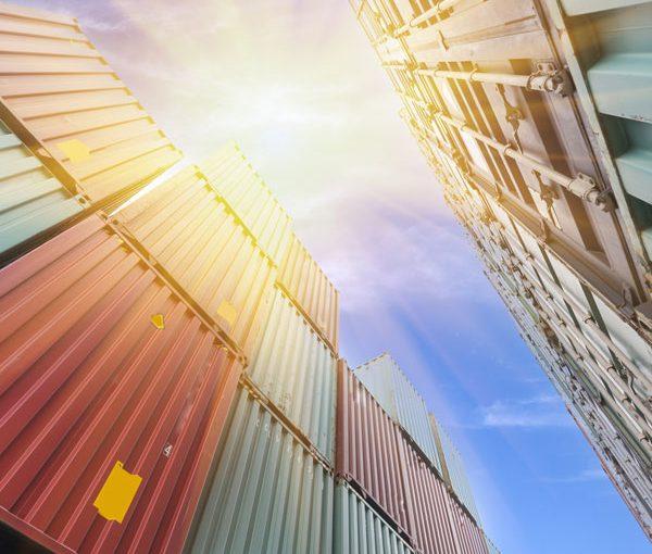 waratah interstate container removals