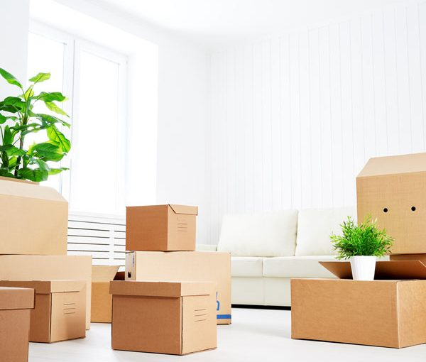 boxes to use for packing household items